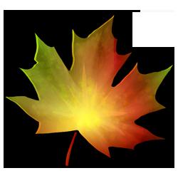 autumnleaf-green-image.png