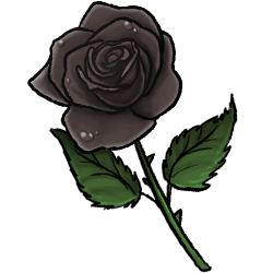 black-rose-image.png