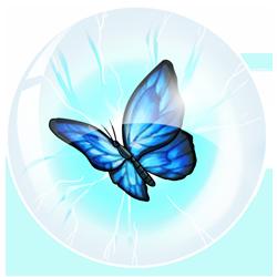 orboforder-blue-image.png