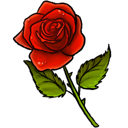 red-rose-image.png